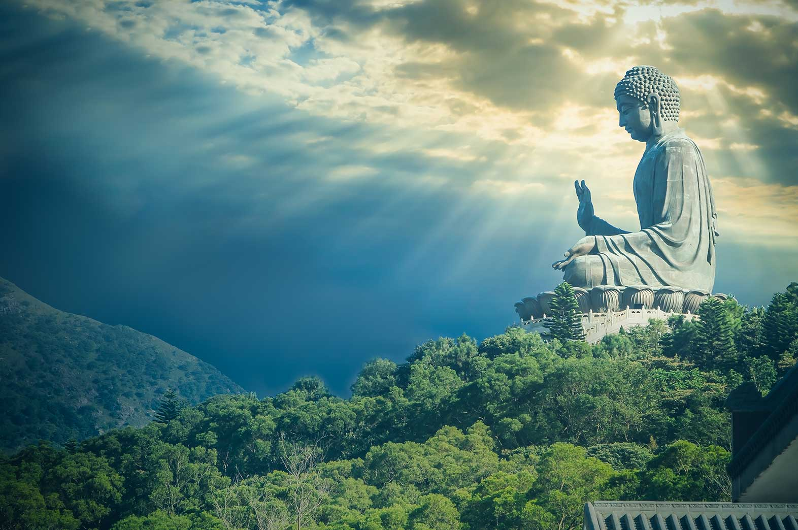 マインドフルネスの核:ヴィパッサナー瞑想